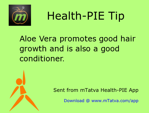 aloe vera promotes good hair growth and is also a good conditioner 64.png