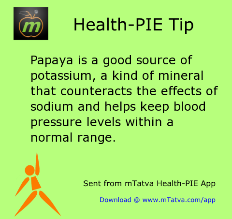 papaya is a good source of potassium a kind of mineral that counteracts the effects 229.png
