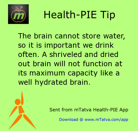 the brain cannot store water so it is important we drink often a shriveled and 28.png