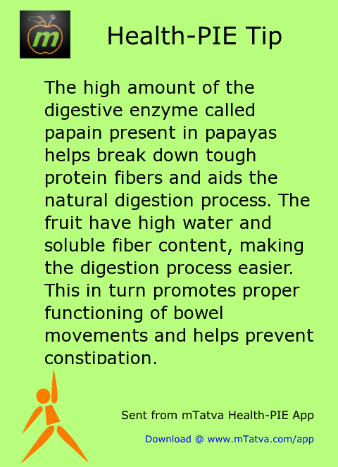 the high amount of the digestive enzyme called papain present in papayas helps break down 223.png